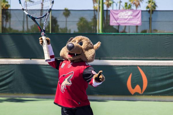 The Wigwam Howler Tennis